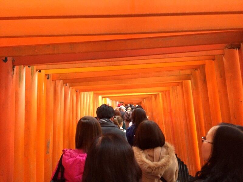 子供も楽しい。京都観光なら伏見稲荷大社!稲荷山を家族でプチ登山!