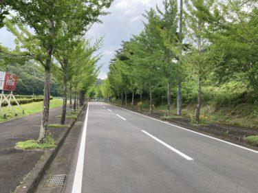 午後ランニング|京丹波町【道の駅瑞穂の里さらびき】までの往復ランニング